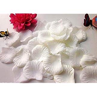 CHSYOO 1000 x Hojas de Rosas Artificiales Flores de Rosas Confeti, Decoración romántica Accesorios para Bodas Fiesta de cumpleaños Fiesta de San Valentín Oferta de Matrimonio Propuesta de Matrimonio