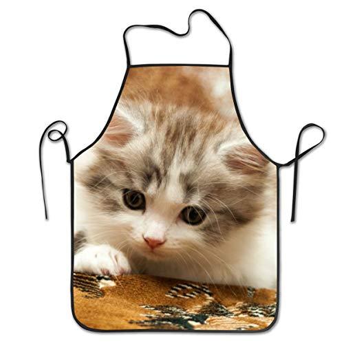 Rasyko Kochschürze für Kätzchen, Backen, Basteln, Gartenarbeit und Grillen (Zum Verkauf Bärte)