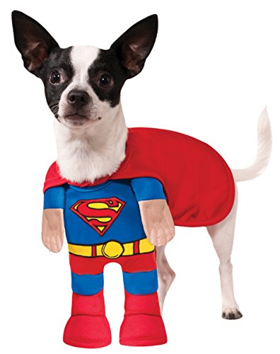 Superman Pet Kostüm - Rubie's DC Comics Superman Pet Kostüm, X-Large, blau/rot