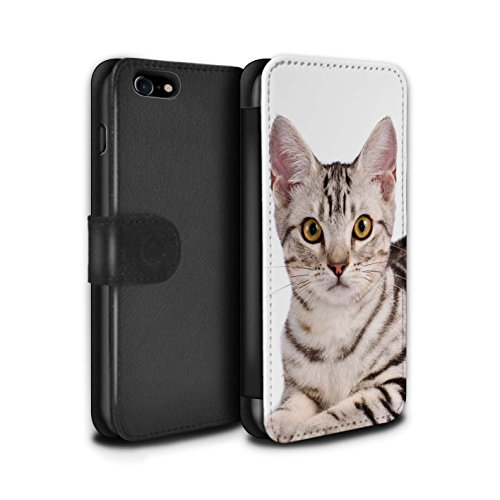 STUFF4 PU-Leder Hülle/Case/Tasche/Cover für Apple iPhone 6+/Plus 5.5 / Kurillian Muster / Katze Kollektion American Shorthair