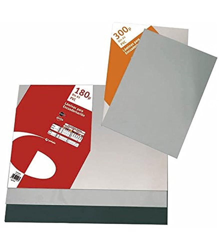 10er-Sparpack Pr/äsentations-Sichtbuch A4 20 H/üllen schwarz