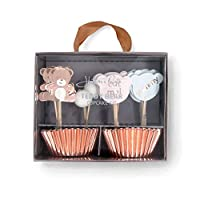 Hatton Gate Teddy Bear Cupcake Kit 48 Cupcake Cases with 24 Assorted Picks per Pack