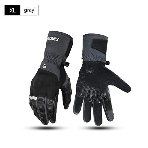 Leiyini Motorrad Handschuhe Skihandschuhe Winter Sporthandschuhe Outdoor Handschuhe Thermohandschuhe Warm für Skifahren Motorradfahren Radfahren Wandern -