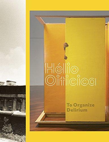 hlio-oiticica-to-organize-delirium