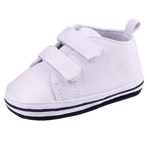 miyuebb® neonato Sweet tela Sneakers suola rigida antiscivolo Velcro Baby Trainer, bianco (White), 0-6 Mesi