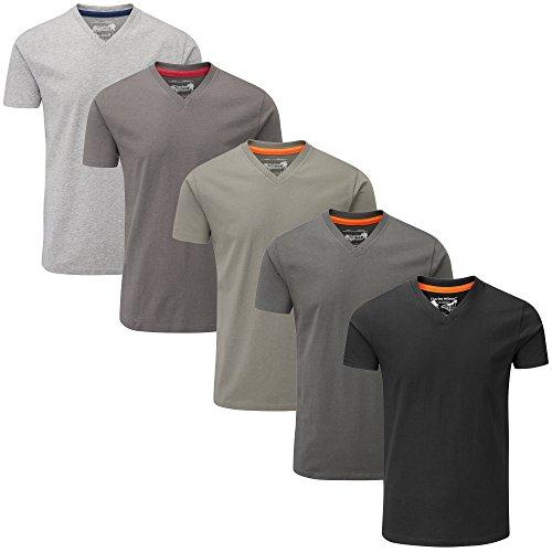 Charles Wilson 5er Packung Einfarbige T-Shirts mit V-Ausschnitt (Large, Monochrome)