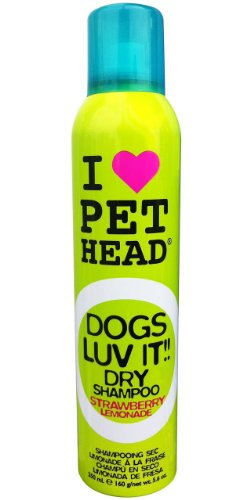 pet-head-dogs-luv-it