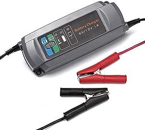 Erayak 1a Batterieladegerät Ladegeräte 6v 12v Für 2 40ah Batterie Auto Auto