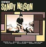 Songtexte von Sandy Nelson - The Very Best Of Sandy Nelson