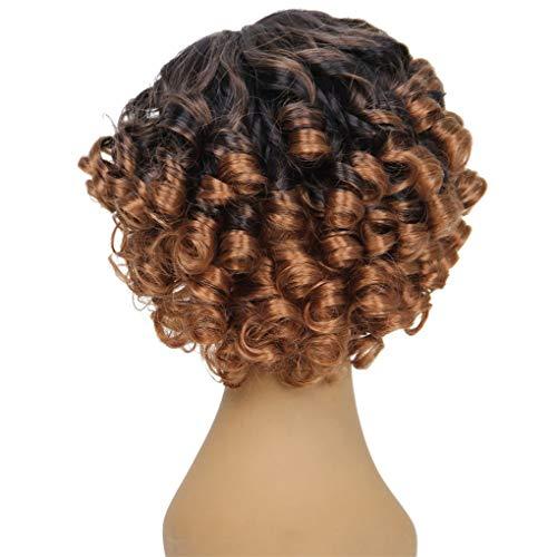 Lockige Perücke/Dorical Damen Perücken 30 cm/volle lockige Perücke Bob Wave Hair für Karneval Fasching Cosplay Party Kostüm für verschiedene Hautfarben(Braun)