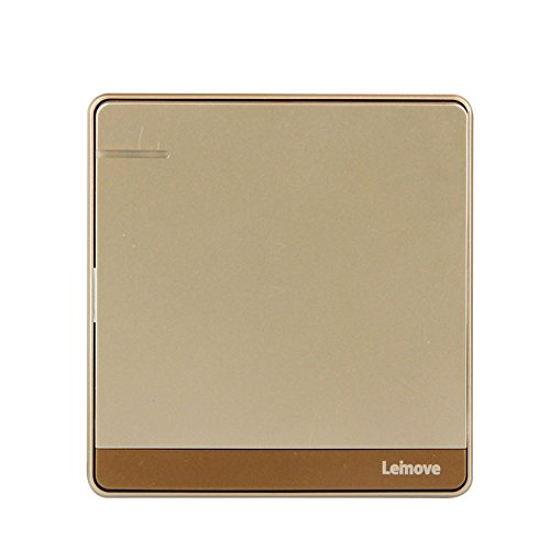 raymond-lighting-switch-socket-panel-champagne-gold-single-open-single-control-switch-open-single-co