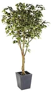 1,83 Meters-Albero di Natale artificiale di Ficus Benjamina variegata artificiale a forma di foglia, colore: naturale e tronco in vero legno