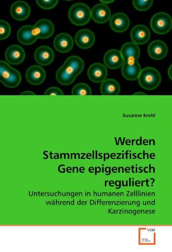 Werden Stammzellspezifische Gene epigenetisch reguliert?: Untersuchungen in humanen Zelllinien während der Differenzierung und Karzinogenese