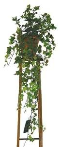 plastique grimpante artificielles lierre anglais vert 30 cm cuisine maison. Black Bedroom Furniture Sets. Home Design Ideas