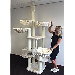 [Gesponsert]Kratzbaum große katze XXL Catdream Extreme Creme 54KG. Sisalstämme 12cm Ø Speziell für große und schwere Katzen. Kratzbaum deckenhoch. Qualitätsproduktion von RHRQuality