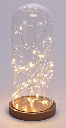Deko Glasglocke mit 35 LED - Micro Lichterkette im Glas - Draht Lichterkette/warmweiß (26 cm)