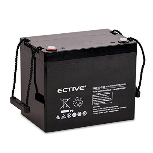 ECTIVE Bleiakku 12V 82Ah Zyklenfeste AGM Batterie Blei Akku EBC-Serie 13 Varianten: 25Ah - 280Ah (wartungsfrei)