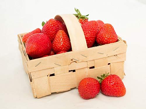 Erdbeeren Weisse Erdbeere