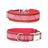 Hundehalsband - Spitzenwerk-Rot, wahlweise mit Gravur und weiteren Extras