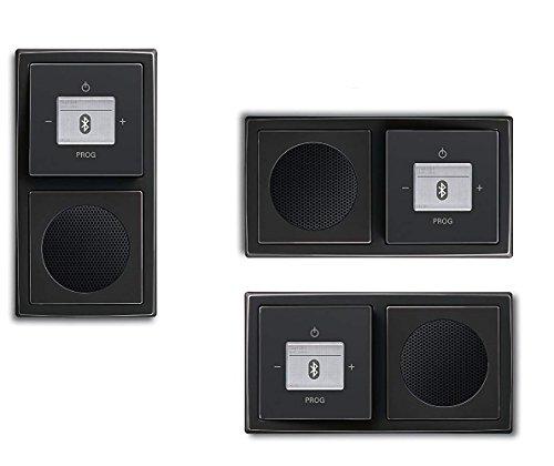 Busch Jäger Unterputz UP Bluetooth Radio 8217 U (8217U) schwarz matt Komplett-Set // Radioeinheit + Lautsprecher + 2-fach Rahmen 1722-885K + Abdeckungen