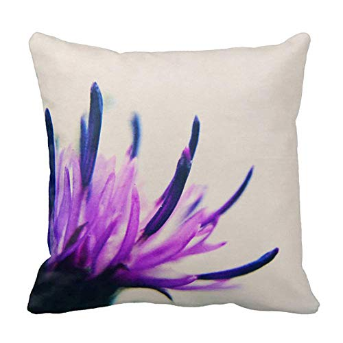 FPcustom Purple Thistle Flower Petals Throw Pillow Cushion Cover 18 X 18 Purple Thistle