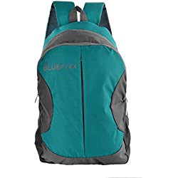 The Blue Pink Polyester Nylon 17 Ltrs Turquoise Dusseldorf Casual Travel Backpack