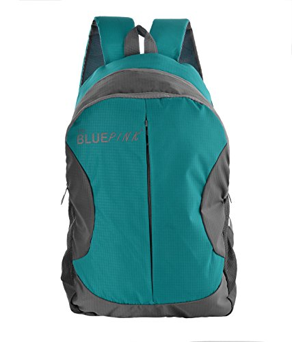 The Blue Pink Polyester 18 Liters Turquoise And Grey Laptop Backpack (LEO-17)