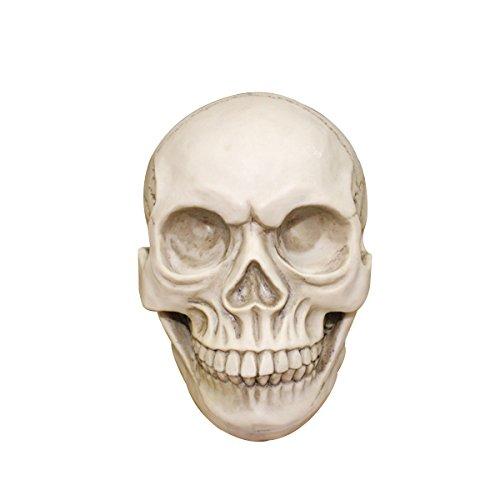 UKCOCO Lebensgroße menschliche Schädel Halloween Requisiten anatomisches Modell -