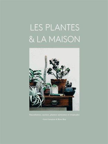Les plantes & la maison : Succulentes, cactes, plantes ariennes et tropicales