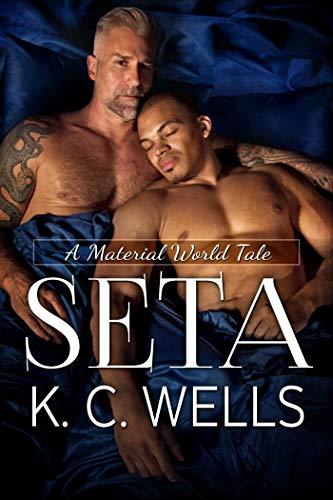 Seta (A Material World Vol. 3)