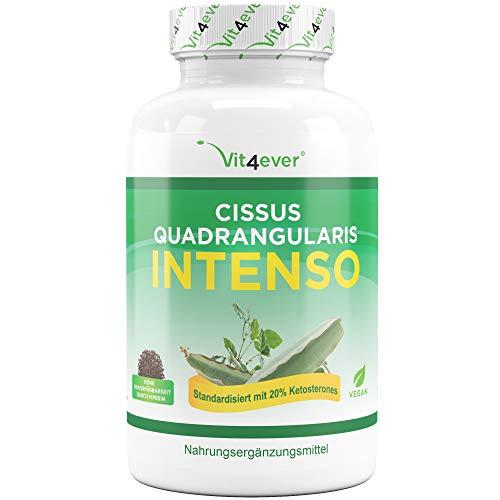 Cissus Quadrangularis Intenso - 180 Kapsel - 750 mg Extrakt - 20% Ketosterone Anteil - Laborgeprüft - Hohe Bioverfügbarkeit durch Piperin - Hochdosiert - Vegan - Premium Qualität