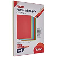 Noki 89105 Renkli fotokopi Kağıdı, 10 Renk, 100 yp.