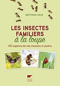 Les insectes familiers à la loupe par Matthias Helb