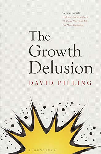 The Growth Delusion: The Wealth and Well-Being of Nations por David Pilling