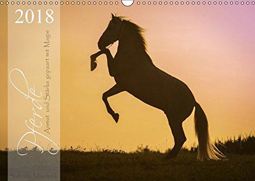 Pferde - Anmut und Stärke gepaart mit Magie (Wandkalender 2018 DIN A3 quer): Ein Pferdekalender voller Magie (Monatskalender, 14 Seiten ) (CALVENDO Tiere) [Kalender] [Apr 01, 2017] Mischnik, Sabrina