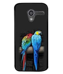 PrintVisa Designer Back Case Cover for Motorola Moto X :: Motorola Moto X (1st Gen) XT1052 XT1058 XT1053 XT1056 XT1060 XT1055 (Awsome Picture of Bird Sitting )