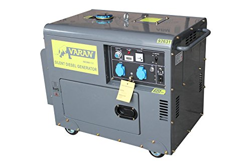 Varan Motors 92631 GENERATOR STROMERZEUGER STROMAGGREGAT NOTSTROMAGGREGAT 5,5kW 2x230V+12V - Diesel-generatoren