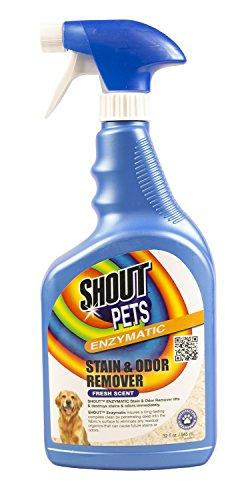 shout-haustiere-ffp4244ps-enzymatische-fleck-geruch-entferner
