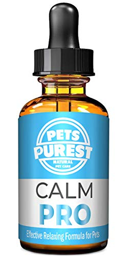 Pets Purest Supplément calmant normal d'aide de 100% pour des chiens, des chats et des animaux familiers. Réduit l'anxiété et le stress chez vos animaux de compagnie (50ml)