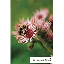 "Address Book.: (Flower Edition Vol. D70) Glossy And Soft Cover, Large Print, Font, 6"" x 9"" For Contacts, Addresses, Phone Numbers, Emails, Birthday And More."