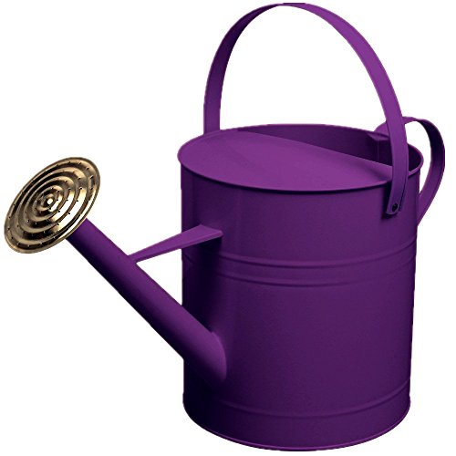 crazygadget-garden-plant-flower-colour-galvanised-metal-steel-watering-can-9l-9-litre-2-gallon-with-
