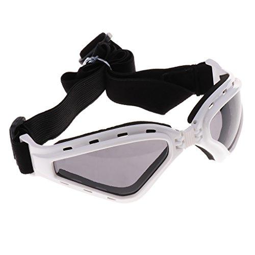 D DOLITY Mode Hundebrille UV Sonnenbrille Wasserdicht & Winddicht Brille Fashion Eyewear Goggles - Weiß