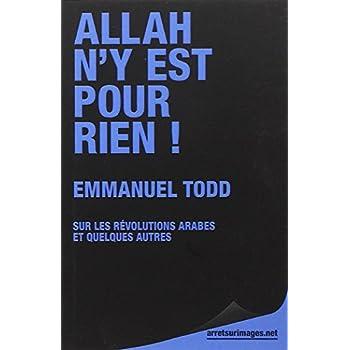 Allah n'y est pour rien ! : Sur les révolutions arabes et quelques autres