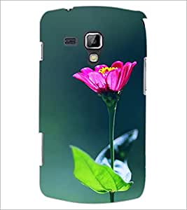 PrintDhaba Flowers D-2443 Back Case Cover for SAMSUNG GALAXY S DUOS 2 S7582 (Multi-Coloured)