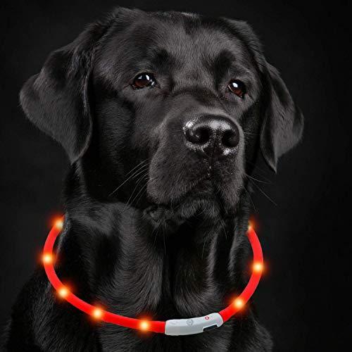 Petgold LED Halsband für Hunde Blinkhalsband - USB Leuchthalsband Hund in Rot 30-70 cm - Hundehalsband Leuchtend - einfach Kürzbar & 3 Modi