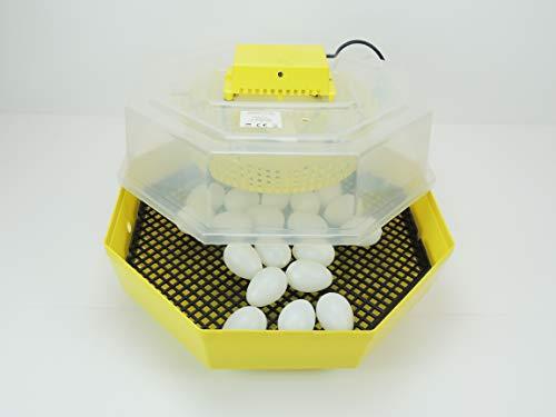 Inkubator Brutkasten Campo24 C1 - 3