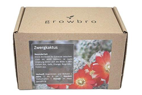 growbro | Zwerg - Kaktus | Anzuchtset | Geburtstagsgeschenk, Geschenke für Frauen, Geschenk für Freundin, Geschenkideen Kakteen, Cactus