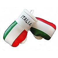 Guantes pequeños de boxeo para retrovisor interior del coche (2 unidades), diseño de Italia
