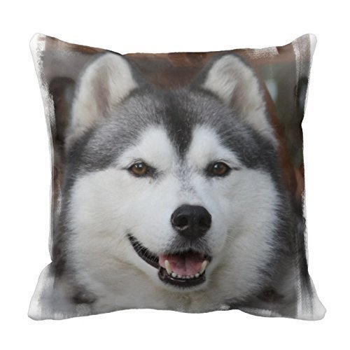 A Close-Up of Husky Pillow Home Decorative Throw Pillow Cover Cushion Case Pillow or Bed Pillowcase for Couch Sofa Or Bed Set Cozy Home Decor Size:16 X 16 Inches/40cm x 40cm (Up-date Dress Dream)