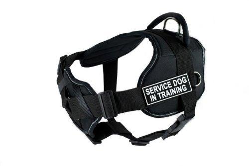 Dean & Tyler DT Fun Service Dog in Training Hundegeschirr mit gepolsterter Brust Stück, passt Umfang Größe 22bis 27, klein, schwarz mit reflektierendem Rand